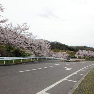 堺市営 堺市霊園(鉢ヶ峯公園墓地)